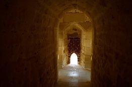 The Citadel of Alexandria